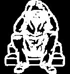 Unsichtbar-Logo-white